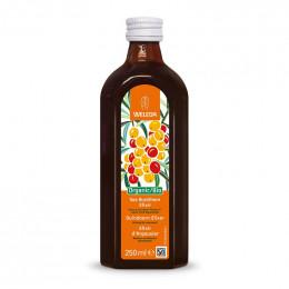 Elixir d'Argousier BIO - 250 ml