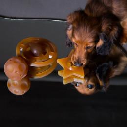 Set de jouets en caoutchouc naturel pour animaux de compagnie